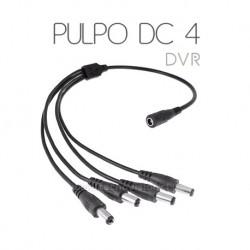 PULPO DC 4